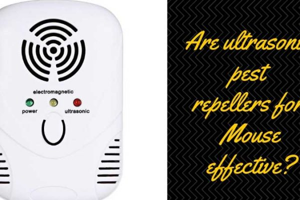 Ultrasonic Pest Repellent for Mouse