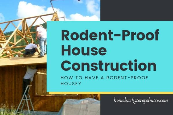 Rodent and Mice Proof House Construction